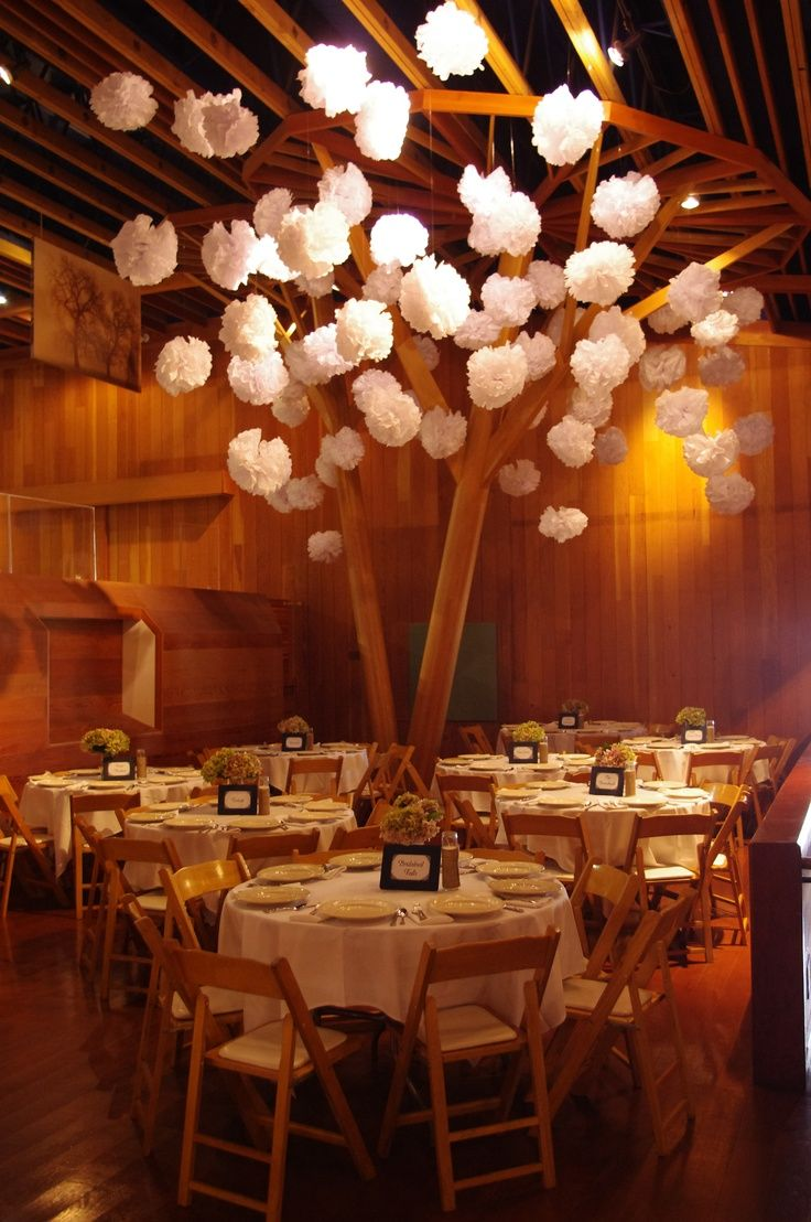Redwood Tree Wedding Hall Decorations