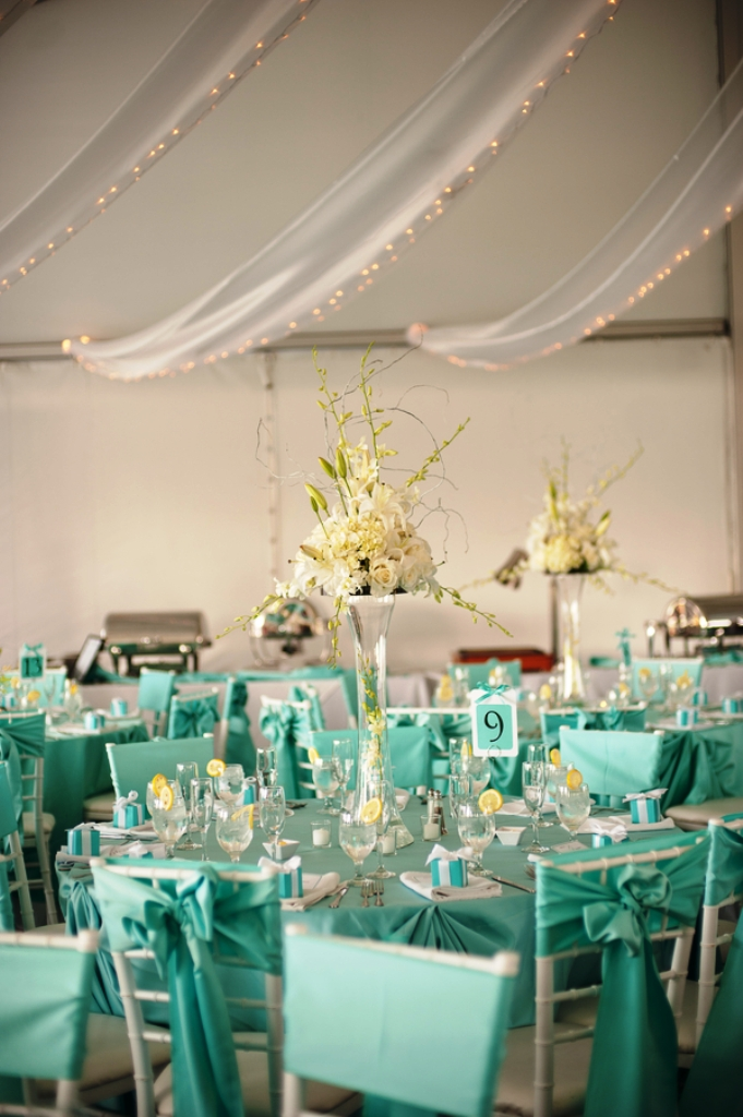 Tiffany Blue Bling Wedding Decorations