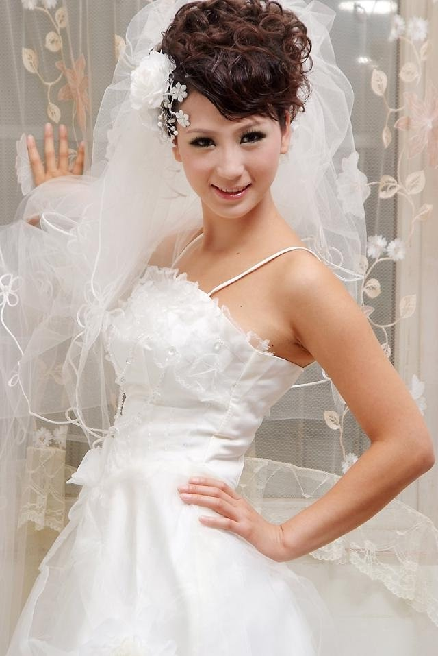 Wedding Hairstyles With Braids And Veil